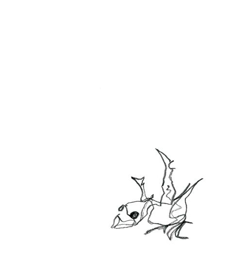 ganz ganz frisch_2016, Zeichnung auf Papier, 29,5 x 33 cm